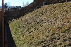 Backyard Terracing Ideas: How To Save Money On A Backyard Terracing Project