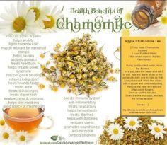 Health Benefits of Chamomile