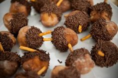 Acorns made with doughnut holes! Rustic Cabin Thanksgiving Party via Kara's Party Ideas.