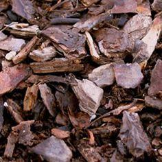 Understanding Mulch | Garden Club