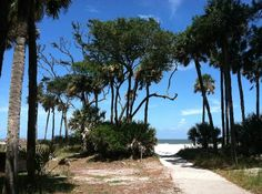 Beaufort, SC: Hunting Island State Park