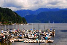 A Day at Deep Cove: 10 Things to Do | BCLiving