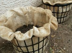 laundry baskets and burlap to grow potatoes...wonder if you could do it with other stuff too