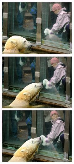 Kiss? Kiss.