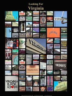 Looking For  Virginia