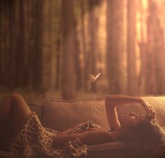 butterfli, comfy couches, heart, dream, thought, fairi, forest, place, light