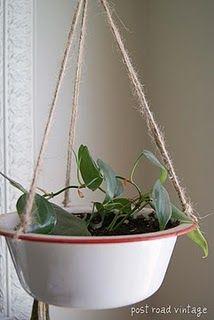 Enamelware pot as planter