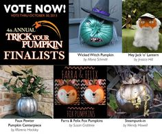 Help us choose the winner of the 4th Annual Trick Your Pumpkin Contest! Vote now thru 10/30/13