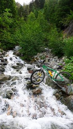 mt bike ride with millar the dog on whistler/blackcomb mountains by millardog, via Flickr #whistler