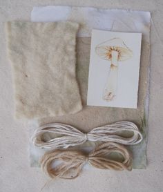 dyeing with wild mushrooms