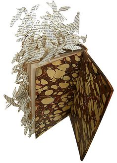 altered book with flying birds