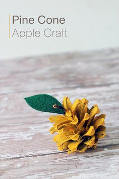 Pine Cone Apple Craft - Fireflies and Mud Pies