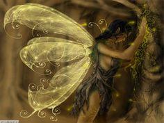 Faeries Art | Beautiful Fairy Art
