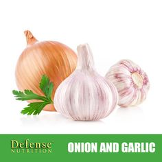 Two other important anti-estrogenic foods are onion and garlic. In both, the active ingredient is the antioxidant flavonoid quercetin. Known for its immuno-supporting and liver-detoxifying proper- ties, quercetin has also shown the capacity to inhibit the enzymes that synthesize estrogen when applied in high concentrations.