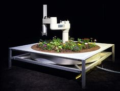 The Telegarden, Ken Goldberg :: The TeleGarden is an art installation that allows web users to view and interact with a remote garden filled with living plants. Members can plant, water, and monitor the progress of seedlings via the tender movements of an industrial robot arm.