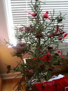 This lil tree came from goodwill.  I decorated it with cardnals and bird nests.  And added berries for a final red theme touch.