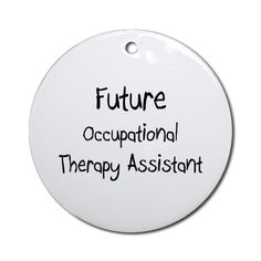 Occupational Therapy Assistant (OTA) an easy essay