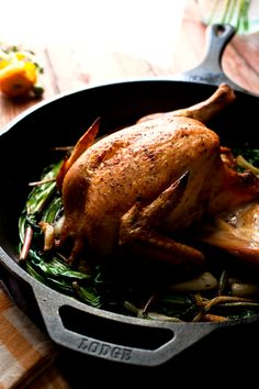Recipe: Splayed roast chicken with caramelized ramps, garlic and capers || Photo: Andrew Scrivani for The New York Times roast chicken, ramp garlic, splay roast, roasts, intern recip, cb foodrecip