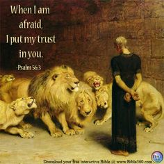 Psalm 56:3    www.bible360.com