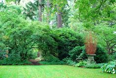 The Intercontinental Gardener: Dunn Gardens, a miniature Olmsted in north Seattle