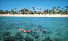 Fiji - swimming