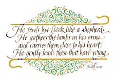 He tends his flock like a shepherd,  He gathers the lambs in his arms  and carries them close to his heart;  He gently leads those that have young.    Isaiah 40:11