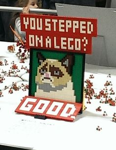 Seen At a Lego Expo