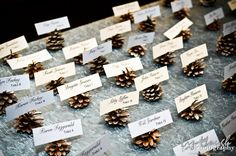 pine cone placecards