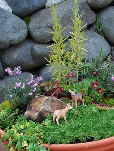 Miniture gardens are to cute to have in the smallest piece of garden #MiniatureGarden #GardenDecor #Fairies