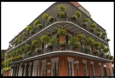 new orleans french quarter...   must see before I die