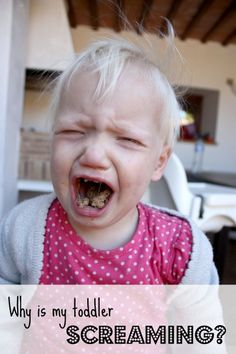 A humorous look at toddler tantrums. 10 Reasons my toddlers are crying!