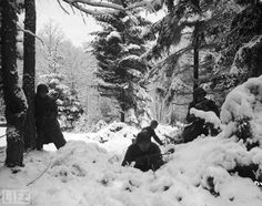 The Battle of the Bulge: January 1945. American infantrymen from the 290th Regiment crouch in the snowy woods near Amonines, Belgium.