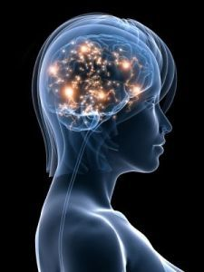 Memory Tied to Simultaneous Activation of Brain Regions