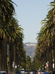 Hollywood Hills and the Hollywood Sign, Los Angeles, California, USA Photographic Print