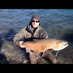 What. A. Fish.  Pyramid lake cutty caught by Dave Hamel