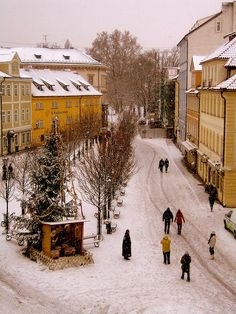 Czech winter scene