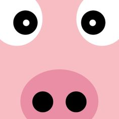 Animals Zoomify by Grafish Design, via Behance