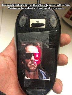 Terminator mouse