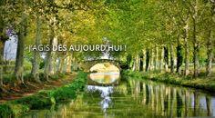 Canal du Midi - Martine Gingerich