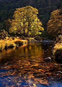 'Autumn Highlights', Glendalough, County Wicklow