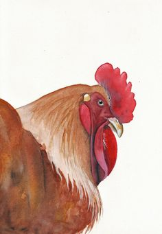 Things that inspire me to take up watercolor painting.  Chicken Painting  Bird ART Archival print of by Splodgepodge, $15.00