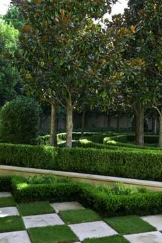 #boxwood and checkerboard pavers and grass