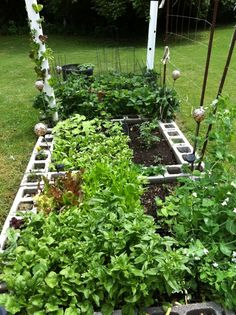 My square foot garden 2013.