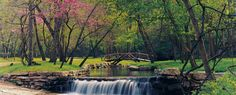Dogwood Canyon Nature Park - Branson Missouri Resorts   Big Cedar   Branson Missouri Vacation Lodging
