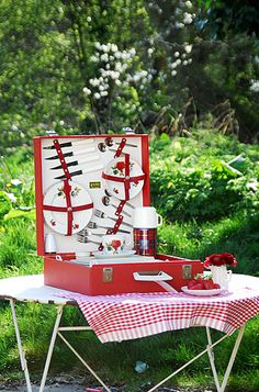 1950s Brexton picnic set, 1.  Love the red roses.