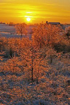 Wintery sunrise, Scott County, Kentucky