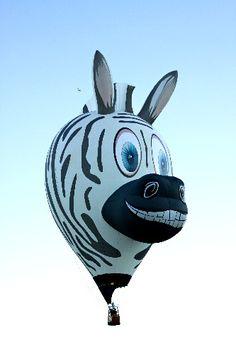 It's a bird, it's a plane.... no it's a zebra hot air balloon