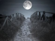 Road to the moon...