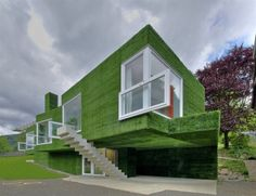 Grass-Covered-House
