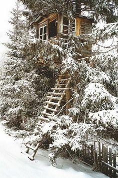 Tree Houses - Snow tree house